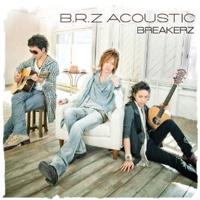 BREAKERZ-BRZACOUSTIC-a200.jpg